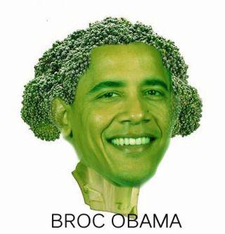 Broc_obama_2